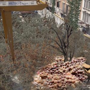 shrinking rome