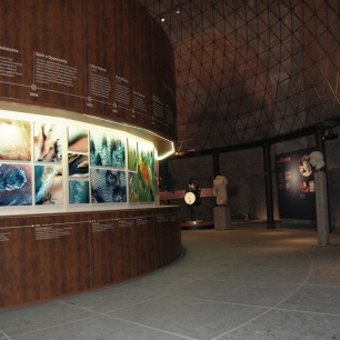 foto della fessura espositiva ambientata nell'aula ottagona